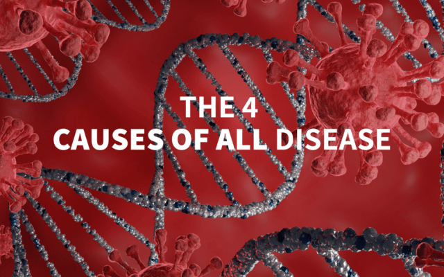 The 4 Causes of all Disease